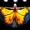 butterfly-tree-image-03